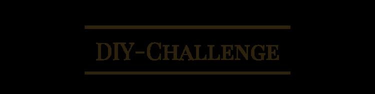 diy Challenge